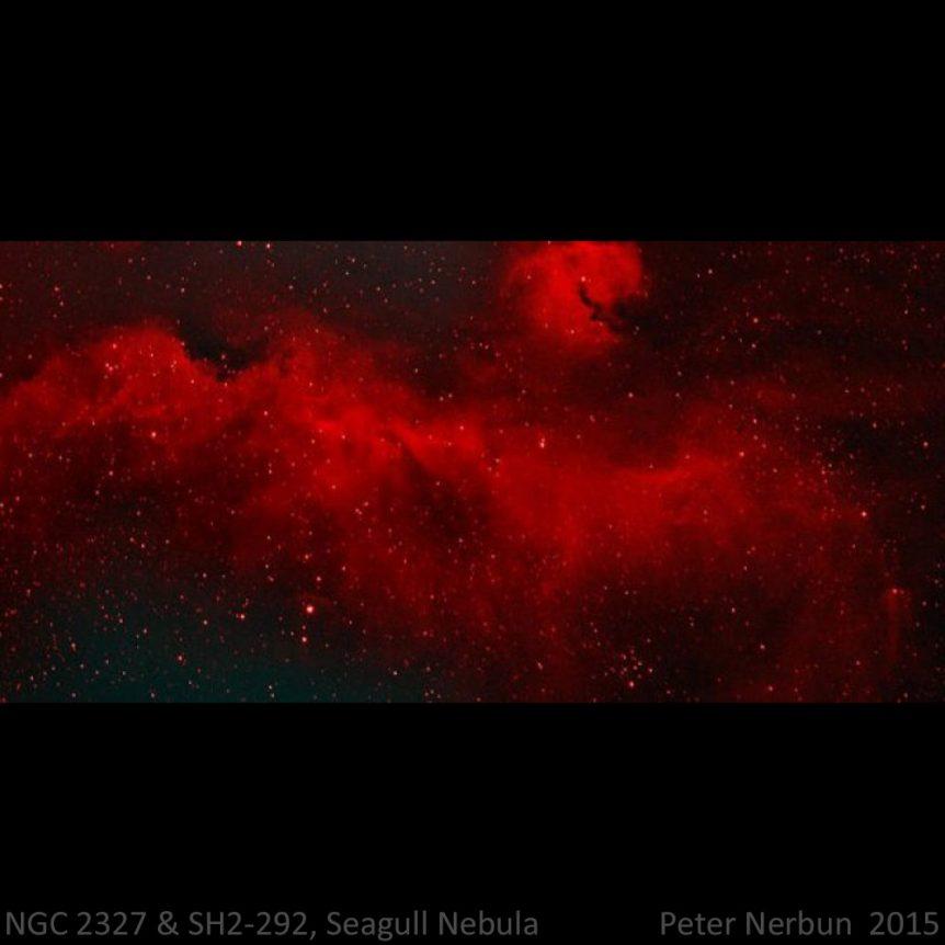 NGC 2327 & Sh2-292